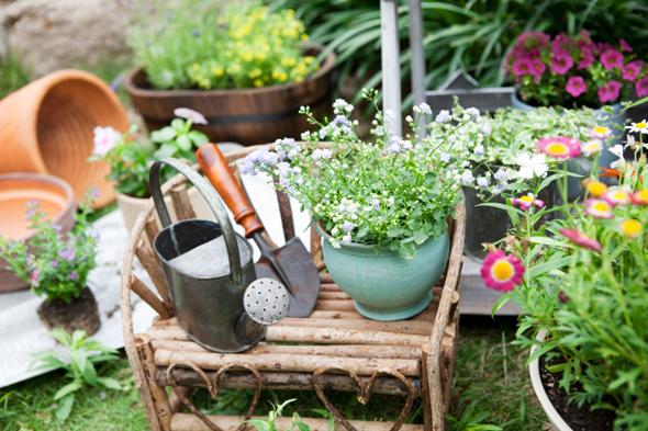 De tuin weer zomerklaar